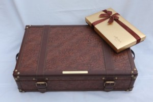 Traveller's suitcase_500x333